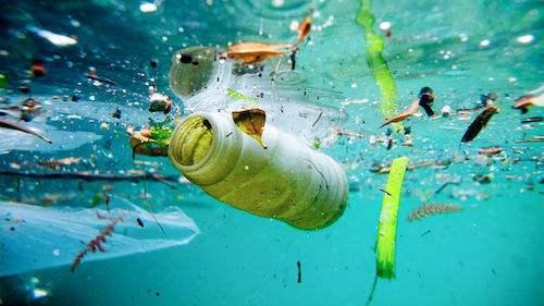 塑料的危害.jpg