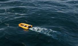 在大海中漂浮
