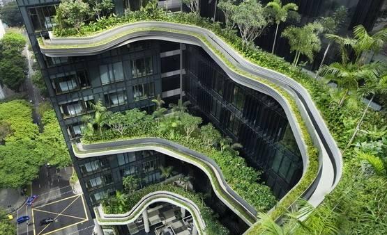 """新加坡""""天空农场""""引领农业革命.jpg"""