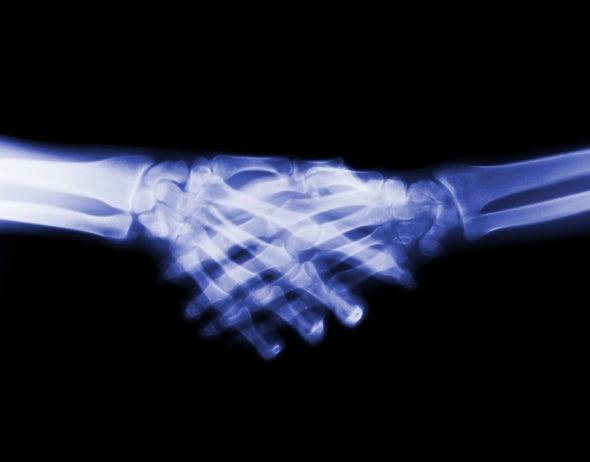 骨骼.jpg