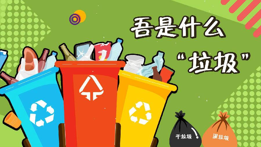 垃圾分类每日两省