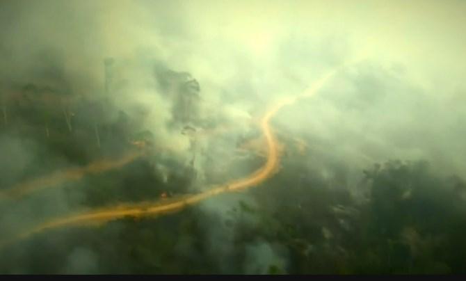 G7援助亚马逊灭火.png