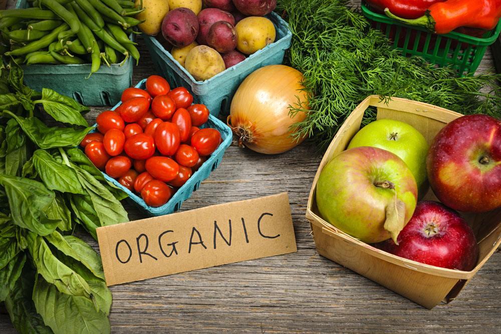 常见的4种保存食物的方法.jpg