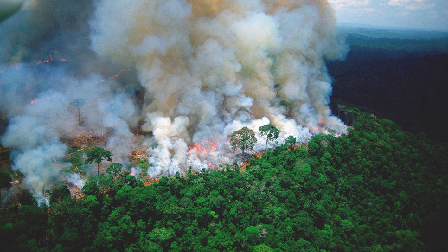 亚马孙雨林火灾是一场国际危机.jpg