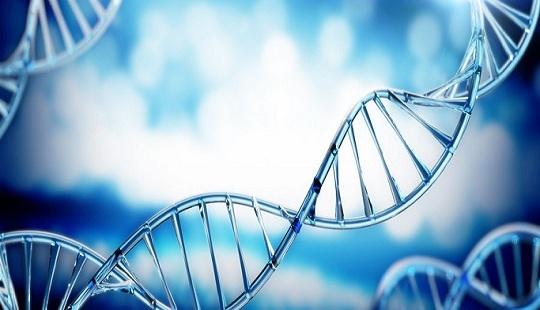 用基因編輯治療癌癥.jpg
