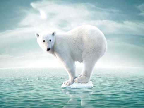 联合国实现气候目标需速战速决.jpg