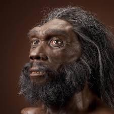 Homo sapiens.jpg