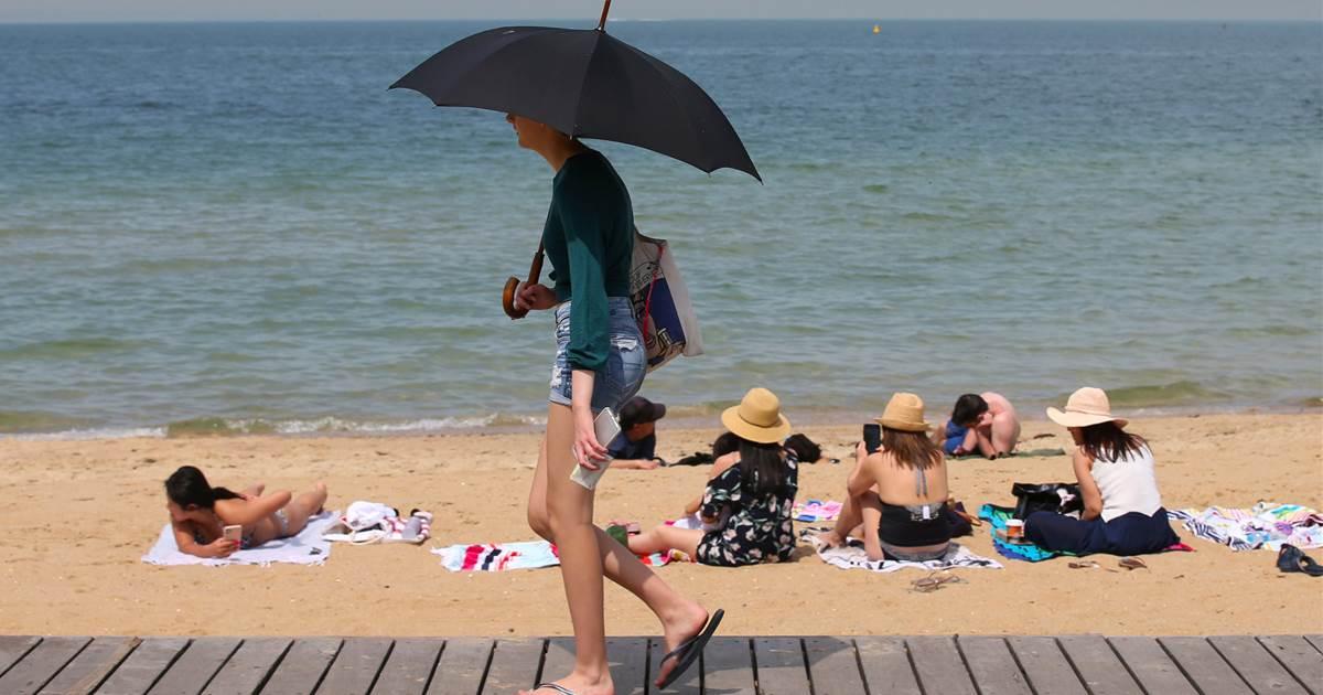 澳大利亚热到快要烧起来了.jpg