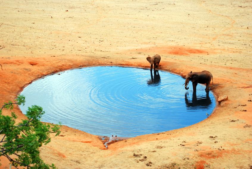 灌溉沙漠(2).jpg