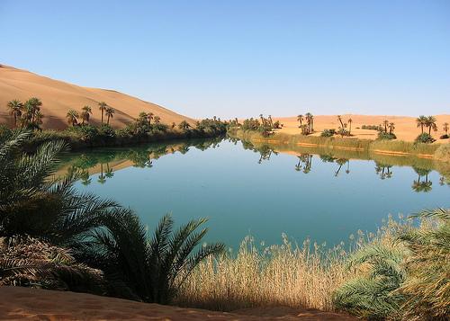灌溉沙漠(1).jpg
