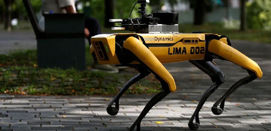 新加坡派出机器狗提醒民众保持社交距离.jpg