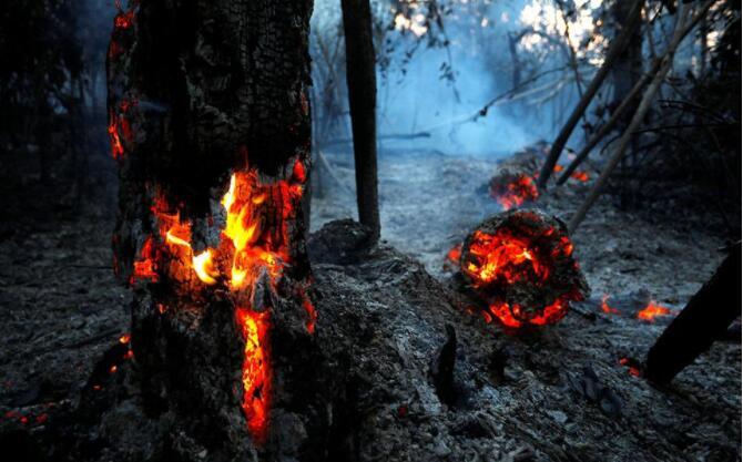 亚马逊火灾持续,巴西承诺救火.jpg