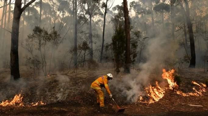 高温干燥天气或致加州火灾蔓延.jpg