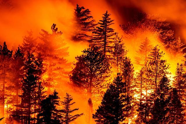 加利福尼亚州山火持续蔓延.jpeg
