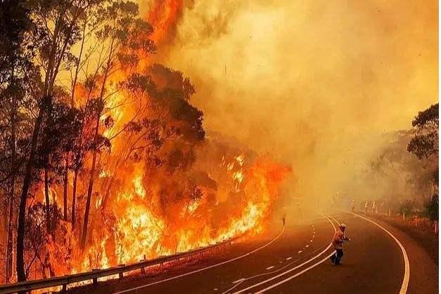 澳大利亚呼吁进行气候风险评估.jpg