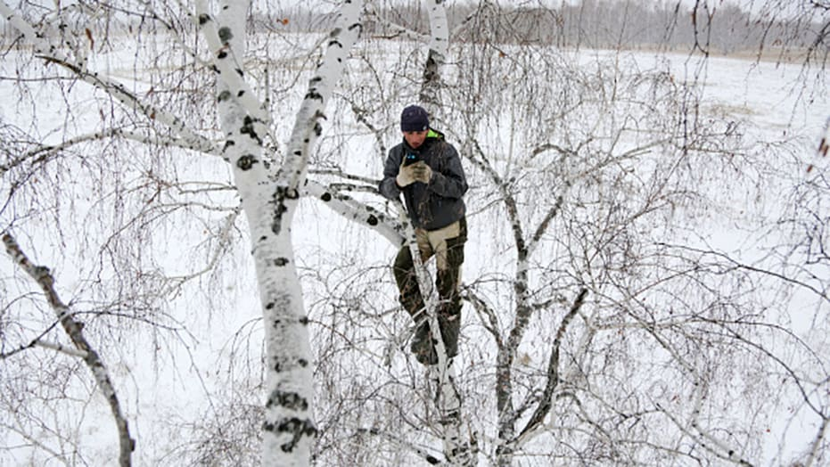 俄大学生爬树顶上网课.jpg