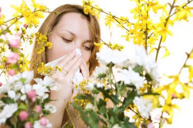 花粉季.jpg