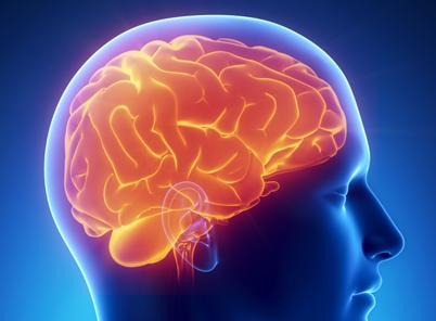 关于超忆症的研究
